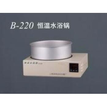 上海亚荣恒温水浴锅B-220