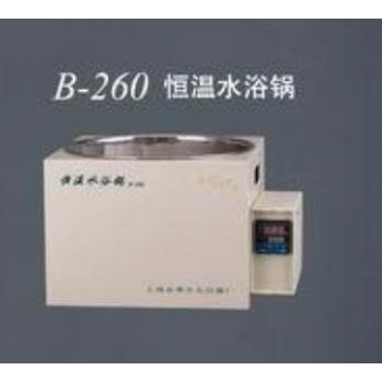 上海亚荣恒温水浴锅B-260