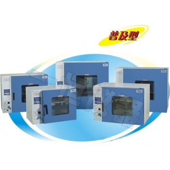 上海一恒台式鼓风干燥箱DHG-9075A